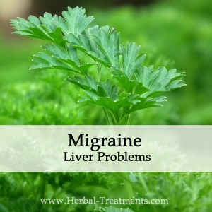 Herbal Medicine for Migraine Liver Based