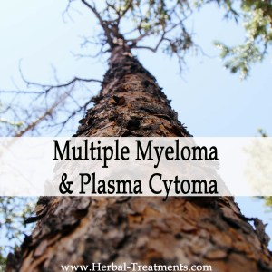 Herbal Medicine for Multiple Myeloma & Plasma Cytoma Cancer Recovery & Prevention