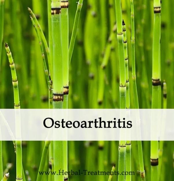 Herbal Medicine for Osteoarthritis