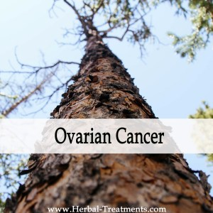 Herbal Medicine for Ovarian Cancer Recovery & Prevention