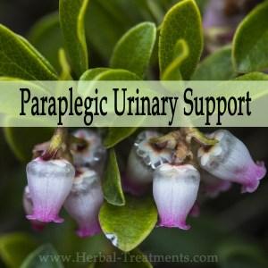 Herbal Medicine for Paraplegic Bladder & Urinary Support