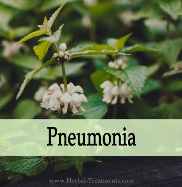 Herbal Medicine for Pneumonia Relief & Recovery