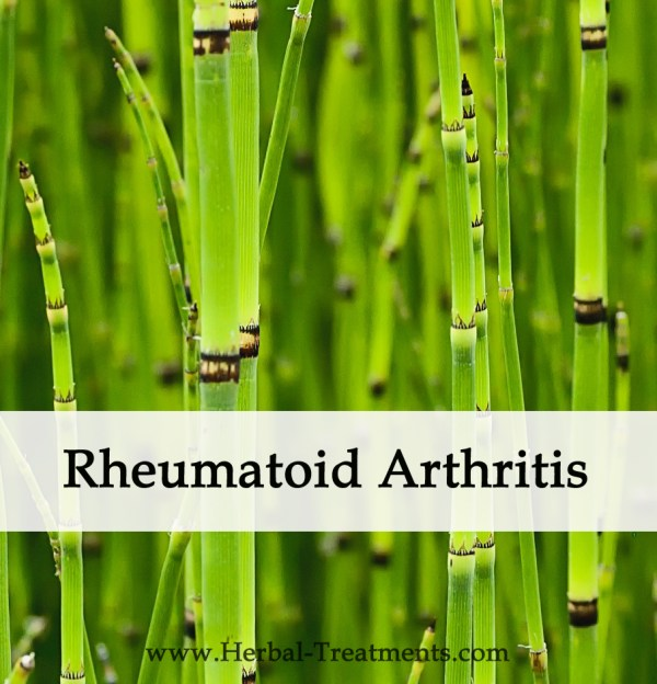 Herbal Medicine for Rheumatoid Arthritis