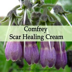 Herbal Medicine - Comfrey Scar Healing Cream