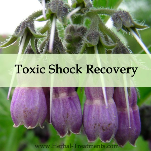Herbal Medicine for Toxic Shock Recovery