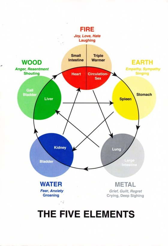 5 Element Chart - wood element