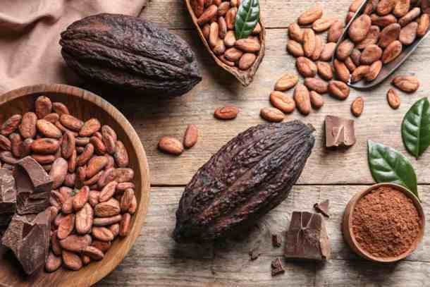 raw cacao shell and cacao beans