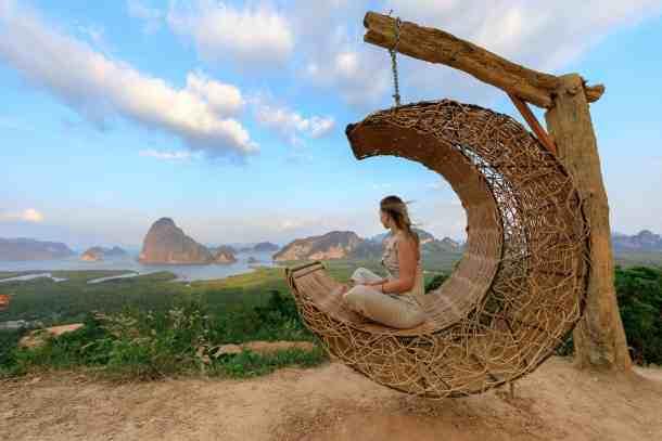 wood sea landscape beach