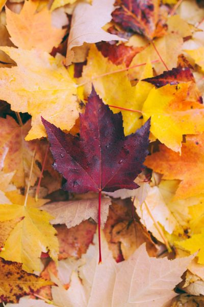 spiritual meaning of autumn