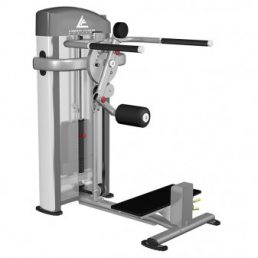 Rotary Hip Machine