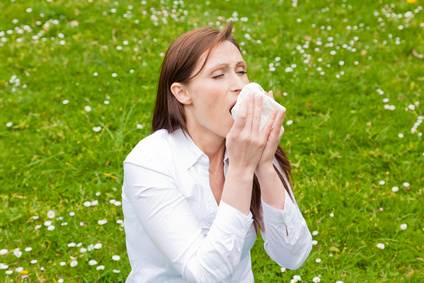 Hay Fever Homeopathic Treatment Help