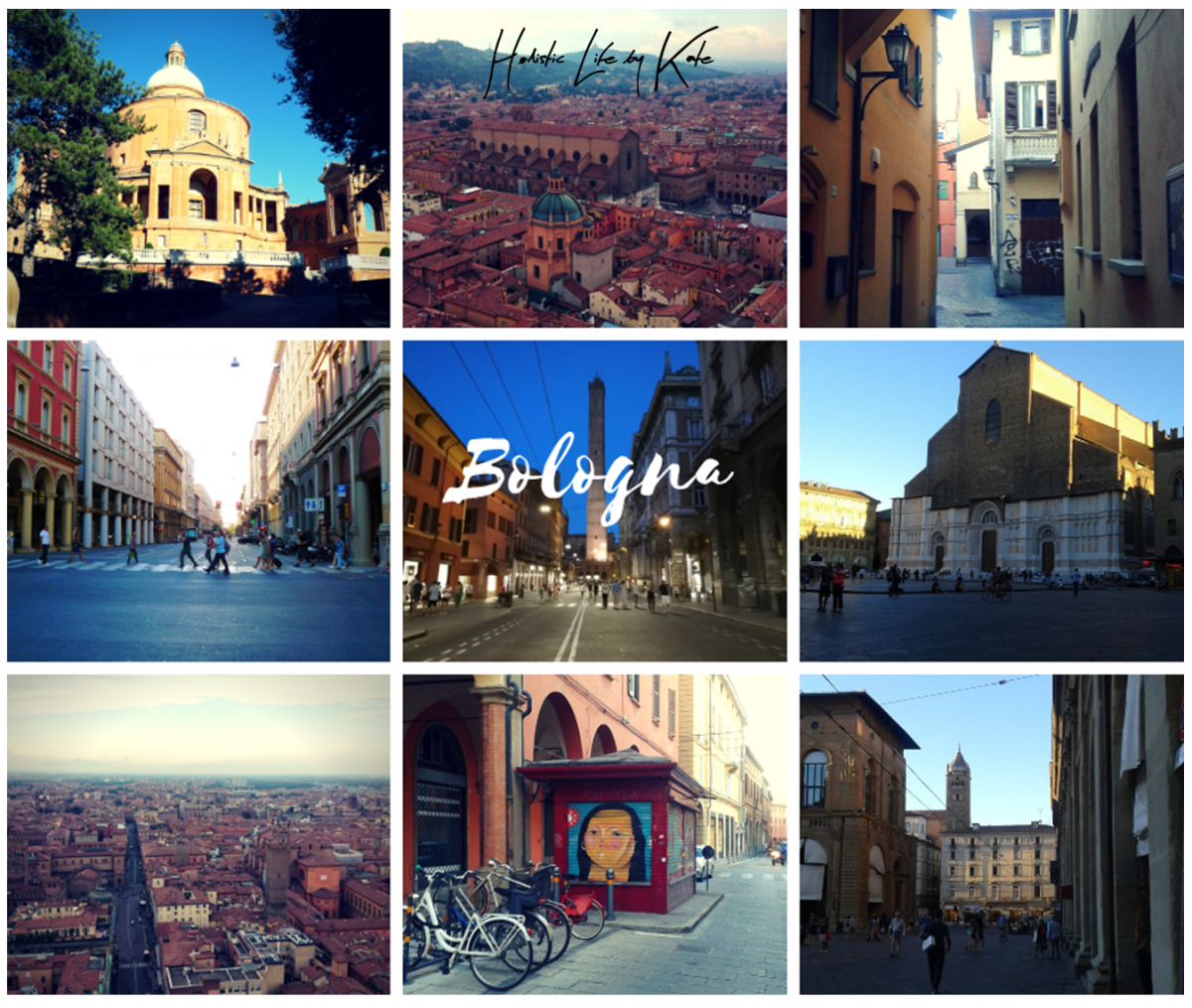 One day trip in Bologna