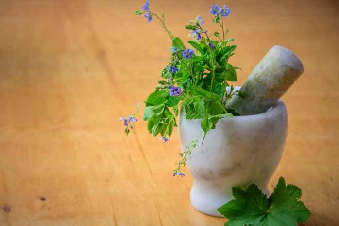 Natural Health, Herbs, Health Tips