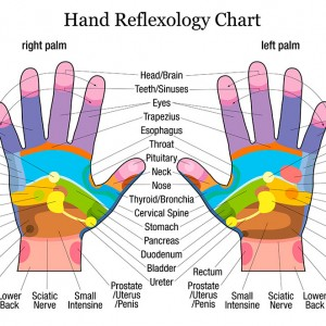 Hand Reflexology Online Course  Holistic Therapies Training