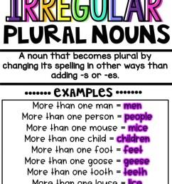 Teaching Irregular Plural Nouns   Hollie Griffith [ 1024 x 787 Pixel ]