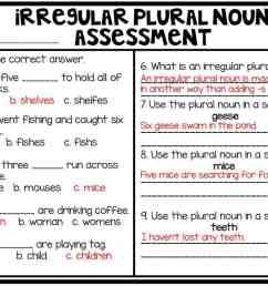 Teaching Irregular Plural Nouns   Hollie Griffith [ 787 x 1024 Pixel ]