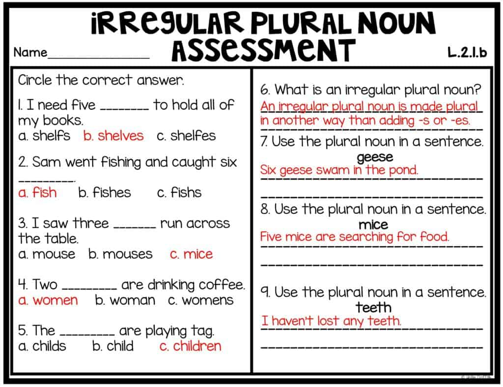 hight resolution of Teaching Irregular Plural Nouns   Hollie Griffith