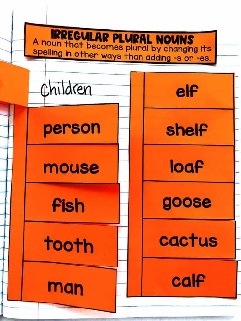 medium resolution of Teaching Irregular Plural Nouns   Hollie Griffith