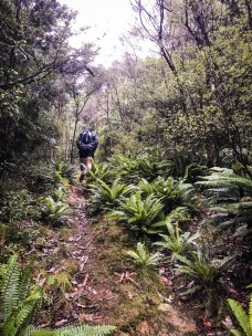 Waitomo-Trail-Run_33