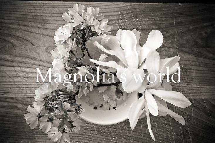Magnoria's World No.42