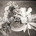 Magnoria'sWorld-Ep1 復活祭の前