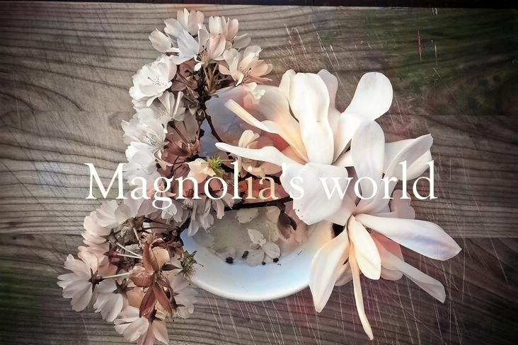 魂の暦 Magnoria's World No.1