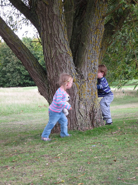 Kids find a climbing tree