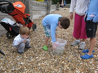 Kids show Charlie their crab collection