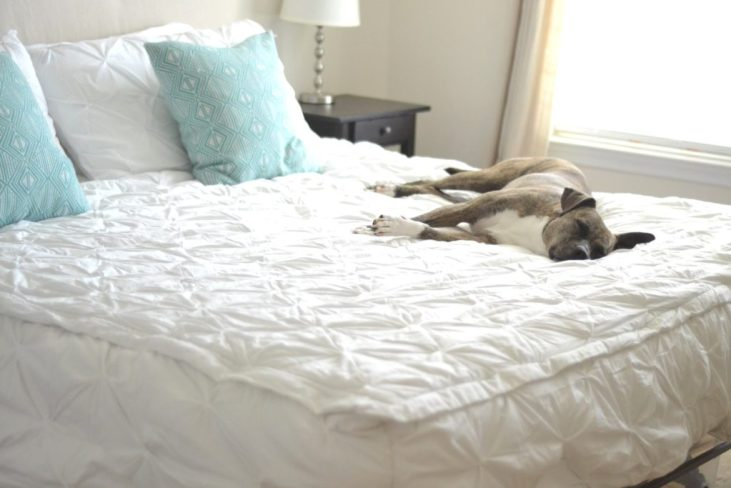 making mornings easier with zip-up bedding