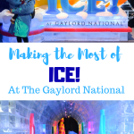 Making The Most of ICE! at the Gaylord National