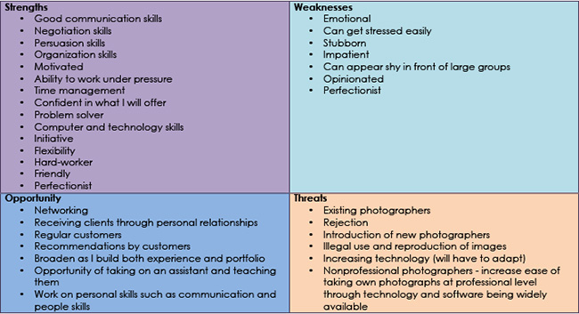 201MC SWOT Analysis And CV Holly Constantine Photography