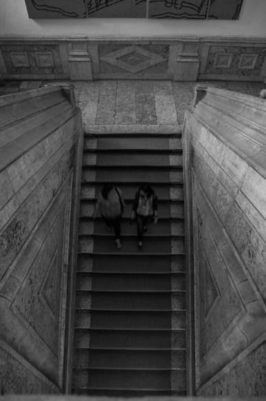 16_fot._Kasia Harasiuk