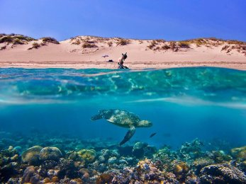 stunning-day-for-snorkelling-in-coral-bay