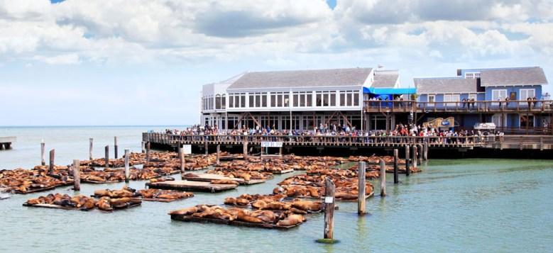 hero_fishermans_wharf_hotels_home5
