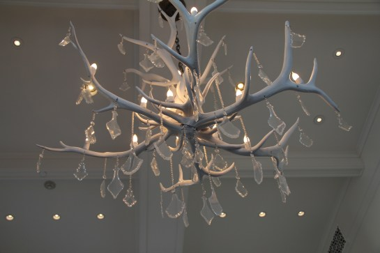 What a beautiful chandelier