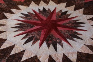 The Compass Star - I love how Fran's Dark/Medium quilts spin and spin