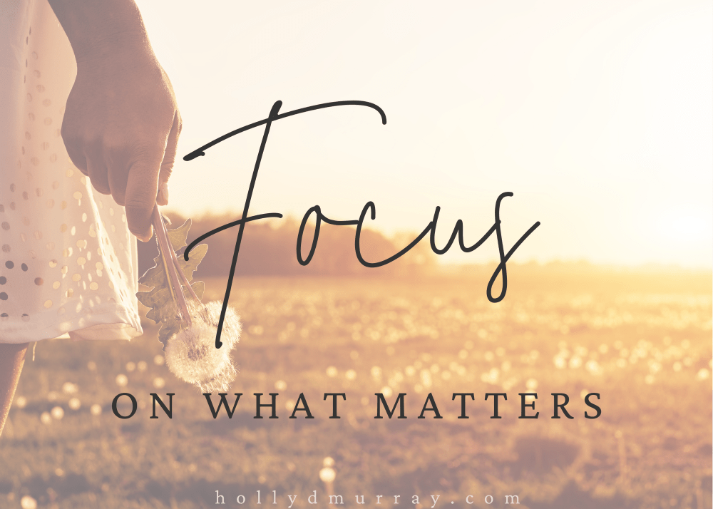Focus on what matters Holly Murray Author Editor