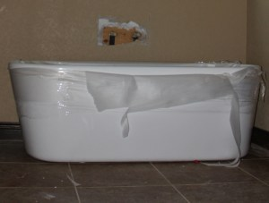 I picture a beautiful fern in this tub - what about you?