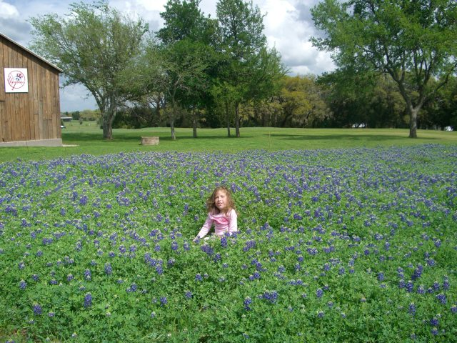 We headed to the hill country to get some fresh air and blue-bonnet photos.  We also took your bike and you rode up and down Marilynn's driveway!