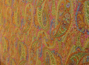 Look at this fabulous backing - no you can't see the quilting - but what a fun fabric!