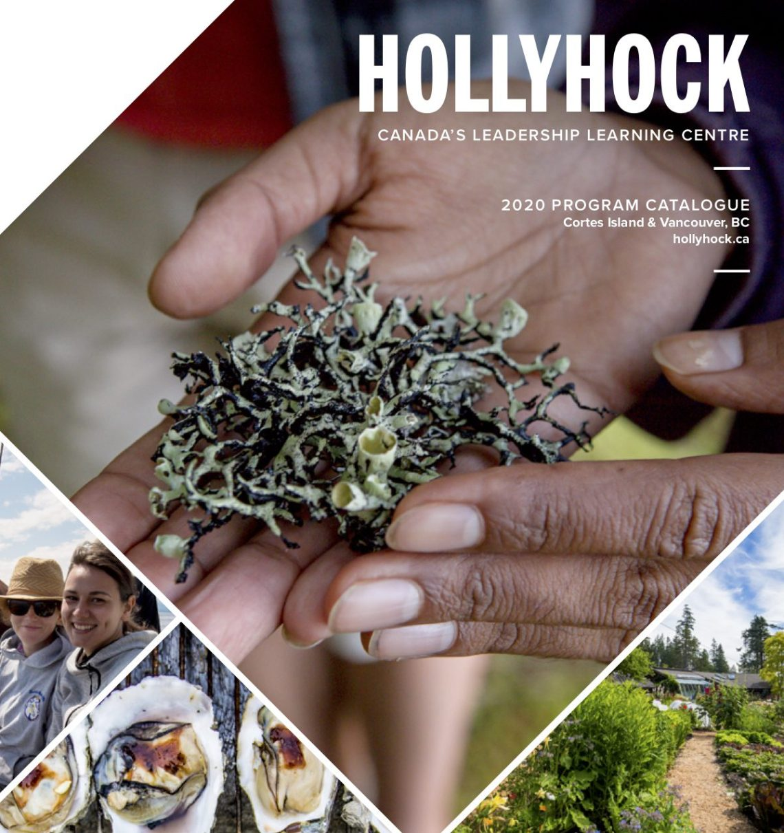 Hollyhock Retreat 2020 catalogue