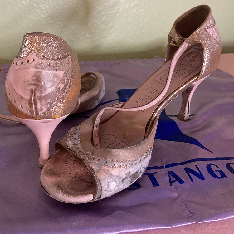 The Life and Death of Tango Shoes