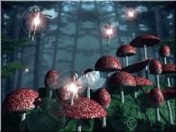 mushroom_fairies