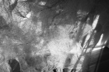 """""""Flight of Ideas"""" (4 of 5), B/W photo, 16""""x 20"""", 2017"""