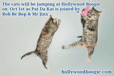 cats jumping oct dance