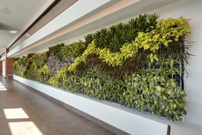 Massive Green Walls, Multiple Plantings Installed at Seminole Hard Rock Hotel & Casino Hollywood