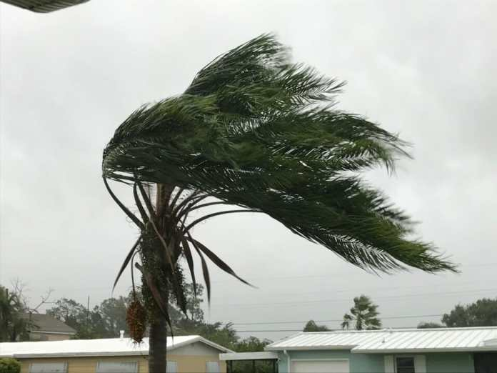 Hollywood residents should prepare for hurricanes