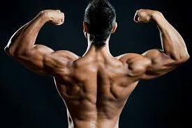 Most common users of steroids