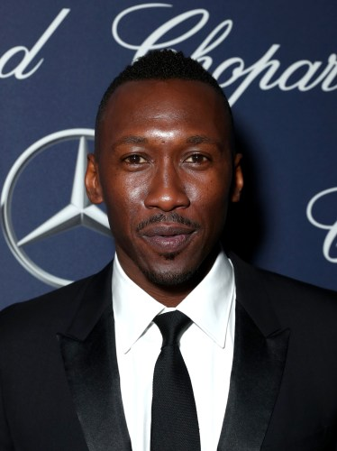 PALM SPRINGS, CA - JANUARY 02: Actor Mahershala Ali attends the 28th Annual Palm Springs International Film Festival Film Awards Gala at the Palm Springs Convention Center on January 2, 2017 in Palm Springs, California. (Photo by Todd Williamson/Getty Images for Palm Springs International Film Festival)