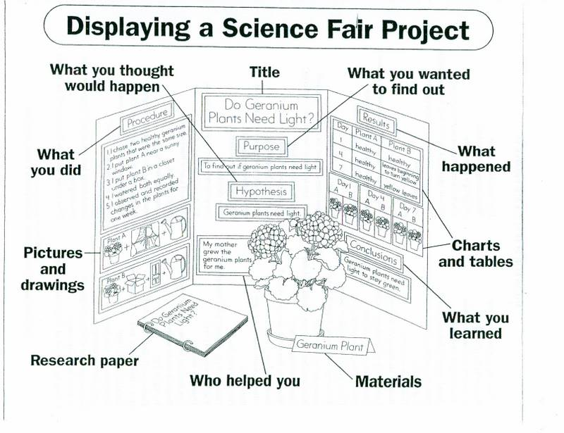 Welcome Fifth Grade Scholars!: Prepare for the Science Fair